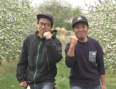 宮嶋林檎園の動画へのリンク